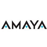 Рост цен на акции Amaya вызвал сомнительные слухи